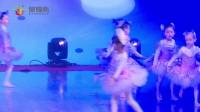 3 芭蕾舞《我的芭蕾梦》 星耀杯2017年12月舞蹈大赛