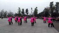 重慶萬州南站蓮花公園交誼舞隊  倫巴   制作:林中草青青