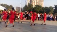 广晋广场舞《单人恰恰舞组合》美女们跳恰恰美呆了,场面震撼美不胜收一饱眼福