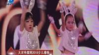 31兔子舞