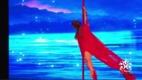 云南芭雅舞蹈艺术学院钢管舞(大鱼)视频