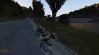 DAYZ  WITH FRIENDS LIKE THESE