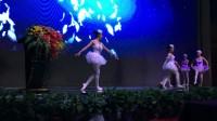 尚艺传媒 商业演出芭蕾舞《黑天鹅的秘密》