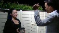 美国小偷偷走500只活蟑螂 失主: 希望它们都能逃走
