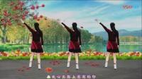応子广场舞黄玫瑰佳木斯快乐舞步健身操第二套
