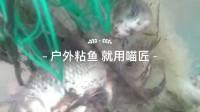户外捕鱼粘鱼钓鱼粘网三层沉网鱼网渔网