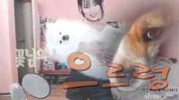 韩国美女主播热舞内衣韩国美女韩国美女主播热舞 04-44