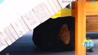 20180327新闻大求真(了解地震常识)_高清—在线播映—大铁棍网,视频高清在线观看