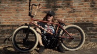 BSD BMX - Reed Stark Safari Bike Check