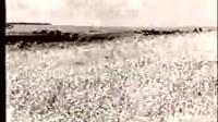 世界大战100年 第一部 1418个日日夜夜 09_标清