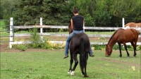 美女骑马 (9)