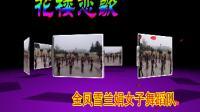 鄂州市金凤兰雪娟女子舞蹈队 广场舞:花楼恋歌