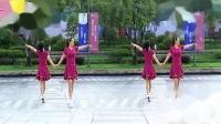 32步双人对跳恰恰广场舞《走天涯》正反面附口令分解教学