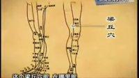 朱鹤亭人生与养生11