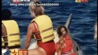 大白鲨大报复