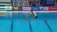 游泳世锦赛跳水-男子单人三米板决赛 曹缘第五跳持续失误 几乎无缘领奖台
