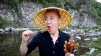 《户外烧烤》烤羊排烧蝉蛹野山菜, 香气扑鼻!