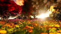 配乐视频 公司晚会 s832 2k画质超唯美小清新空镜头阳光洒满树林鲜花盛开光晕动态视频素材 春节晚会 舞台背景视频