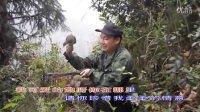 在线观看:快乐鸟K701 毛鸡电媒 鹧鸪电媒视频