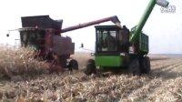 2013凯斯2388收割机收割玉米
