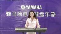 雅马哈KB280电子琴演奏示范