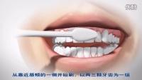 维护牙龈健康保持牙齿稳固