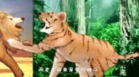稀饭十万个为什么 23 老虎和狮子打架谁会赢?