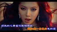 (玫瑰花开)DJ舞曲欣赏 金久哲演唱 超清画质