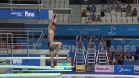 游泳世锦赛跳水-男子单人三米板决赛全场集锦 巅峰之战谢思埸夺金
