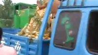 时风玉米收割机延津演示1