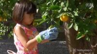 让孩子从花园里到盘子里