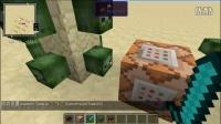拿莱《我的世界》命令方块教程11——僵尸与小白的生物标签
