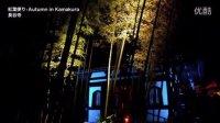 秋の鎌倉の紅葉の名所 Autumn colors in Kamakura 紅葉便り