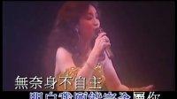 徐小凤89金光灿烂演唱会.