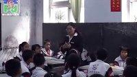 七年级心理健康陈先兵 十字路口课堂实录与教师说课