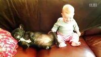 【可爱】打呼噜狗狗让宝宝笑不停!【时光出品】