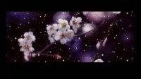 小学四年级音乐课视频上册《踏雪寻梅》