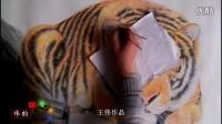 [彩铅]教你画【虎】王伟作品