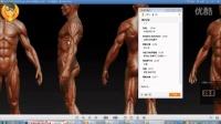 【PS教程】名动漫原画人体之-基础篇10《四肢结构要点(上肢)》