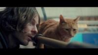 【猴姆独家】萌化了!James Bowen畅销同名自传大电影《流浪猫鲍勃》首曝片段!