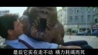 恶搞版金刚:壁橱里的怪物 美男子与野兽荒诞爱情